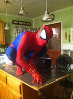 Spider-man costume 4 by stelly777