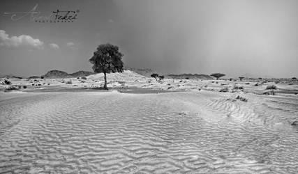 Oman nature 4 by AhmadFekri