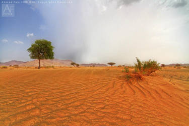 Oman nature 5 by AhmadFekri