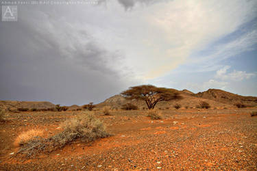 Oman nature 6 by AhmadFekri