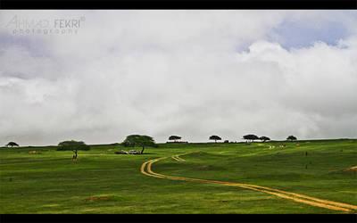 Oman - Salalah by AhmadFekri
