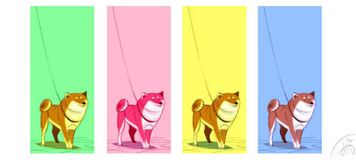 Shiba Colors by Canvascope
