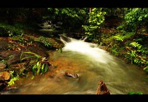 Flowing Fast by DeepKick
