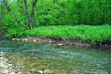 Creek by moonshine09-stock