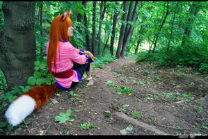 Spice and Wolf 4 by Eletiel