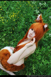 Spice and Wolf 8 by Eletiel