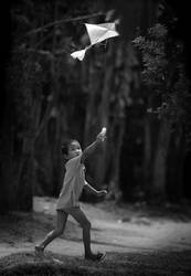 Fly Away by hersley