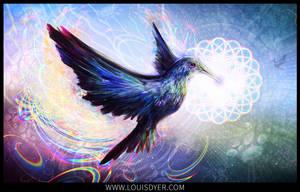 Humming beauty by LouisDyer
