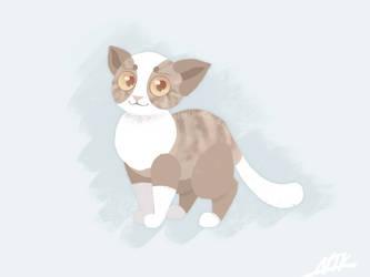 Leafpool the cat-nun by NeriTheKitten