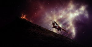 Starry Night by Ellessy