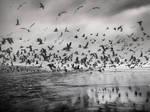 air traffic by VaggelisFragiadakis