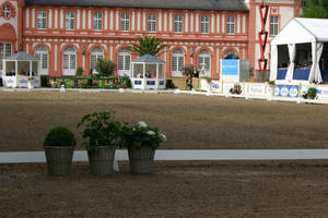 Dressage Arena Stock 11 by LuDa-Stock