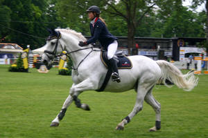 Show Jumping Stock 008 by LuDa-Stock