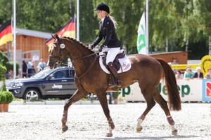 3DE Show Jumping Phase Stock 149 by LuDa-Stock