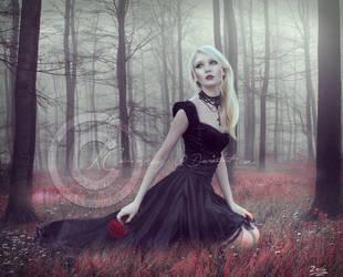 Dark Passion by KCsummerz