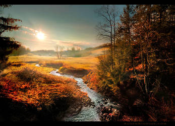 Monongahela Stream Sunrise by AugenStudios