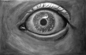 The Augen Eye by AugenStudios