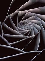 Quintic Twist by timemit