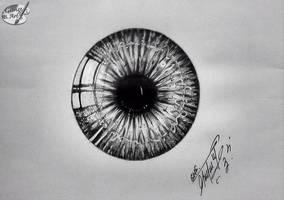 Iris by GeorgeXVII