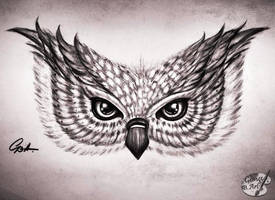 OWL by GeorgeXVII