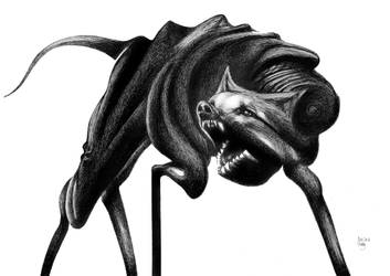 Black Dog by RedTweny