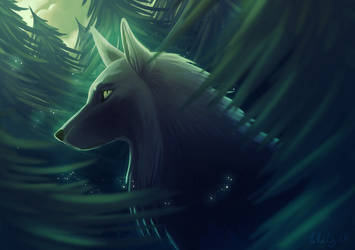 The Wolf in the Forest by Ailita-Kuro