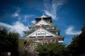 Osaka Castle, Osaka Japan by tdcwillz