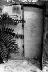 Door - Rikard Bencic by InfinitePlateau