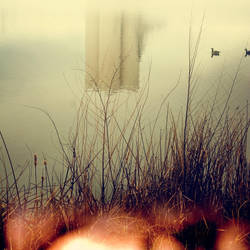 Hush by VexingArt