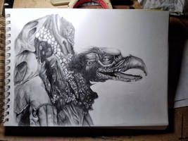 Drawing by VexingArt