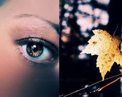 autumn feeling by erykucciola