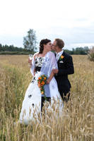 Bride and Groom 3 by RasmusLuostarinenArt
