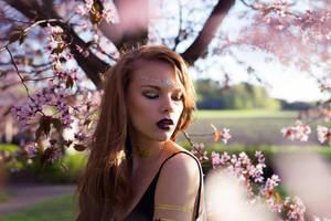 Cherry blossom by RasmusLuostarinenArt