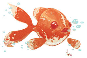 Fish design sketch by Pennance