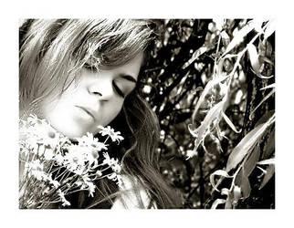 Spring Resonance by Annarah