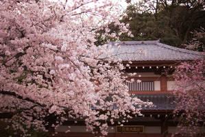 Temple by juju--juju