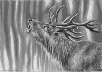 Forest Deer by GabrielGrob