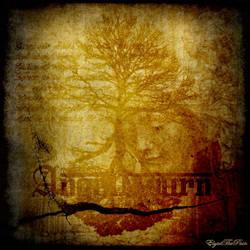 Angel Mourn ... by elyadthepain