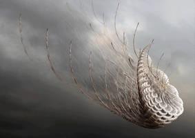Heavenly Galera by wlazy