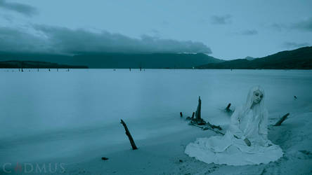 By moonlit waters by metoikos