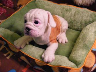 Needle Felted LS English Bulldog Puppy FINISHED by CVDart1990
