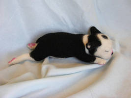 Needle Felted Boston Terrer pup New Design img 2 by CVDart1990