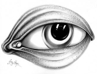 Eye Clam by chairboygazza
