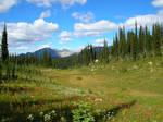 Mount Revelstoke, B.C. Canada by hoodie2u