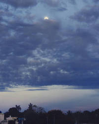 Early Moon  by ashilraj