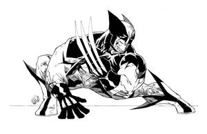 OG WOLVERINE by drawhard