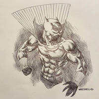BLACK PANTHER sketch by drawhard