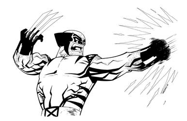 WOLVERINE line art by drawhard