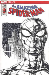 SPIDERMAN sketch cover by drawhard