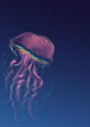 Jellyfish by Pthulhu